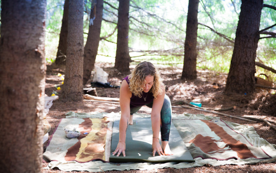 Yoga at Horse & Plow Winery